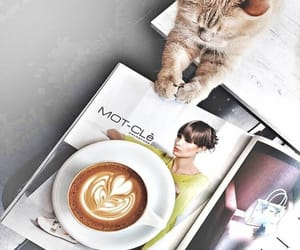 cat, coffee, and enjoy image