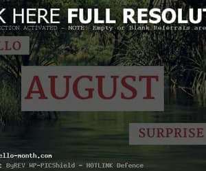 surprise me august quotes, quotes for august, and august surprise me image
