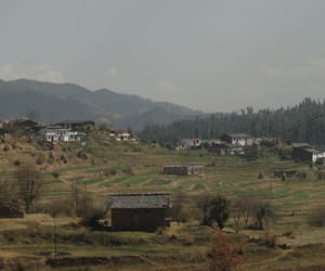 hotels in champawat, champawat hotels, and hotel shiva residency image