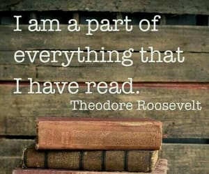 bookish, quotes, and iamareader image