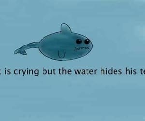 sad, shark, and cry image