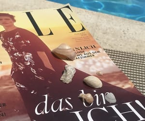 Elle, Hot, and shellfish image