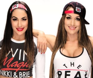 wwe, nikki bella, and brie bella image