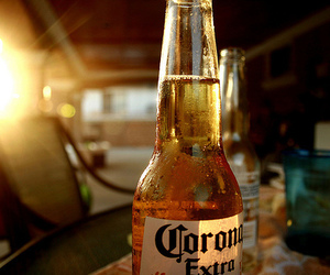 beer, corona, and drink image