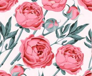 wallpaper, flowers, and pattern image