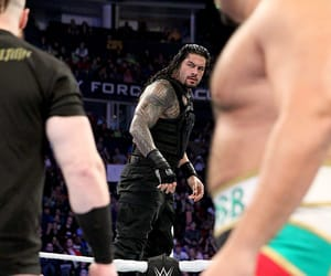 wwe, sheamus, and roman reigns image