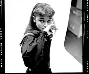 1952, audrey hepburn, and beauty image