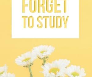 inspiration, motivation, and studying image