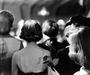 camera, rose, and women image