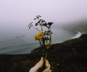 flowers, sea, and grunge image