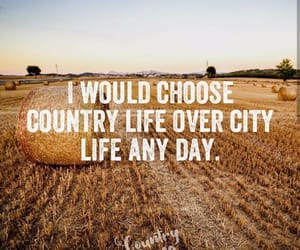 country, countryside, and cowboy image