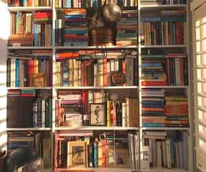 artistic, bibliophile, and books image
