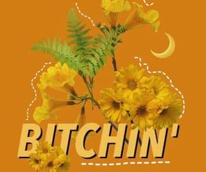 amarelo, de, and flores image