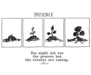 patience, flowers, and inspiration image