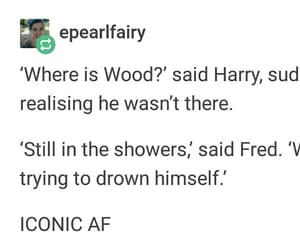 harry potter, tumblr, and fred weasley image