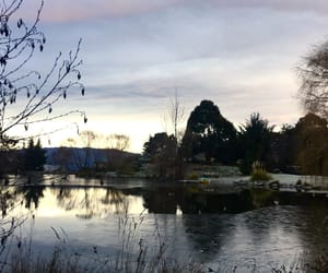 cold, morning, and pond image