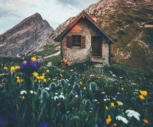 adorable, Dream, and nature image