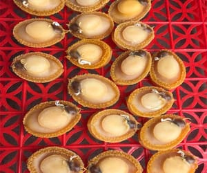 can i buy abalone online image
