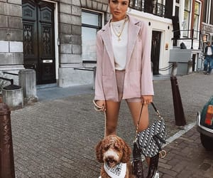 fashion, outfit, and dog image