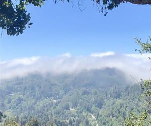 amazing, beautiful, and california image