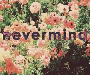 Nevermind, flowers, and text image