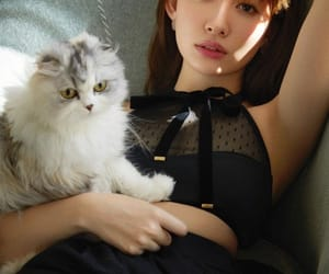cat, japanese girl, and pretty image