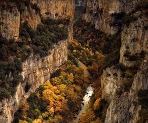 fall, foliage, and grand canyon image
