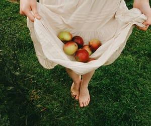 apple and dress image
