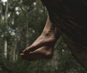feet, green, and forest image