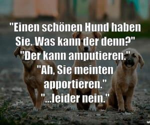 deutsch, sprüche, and humor image