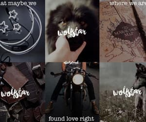 aesthetic, fandom, and the marauders image