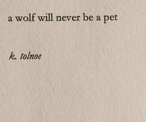 quotes, wolf, and aesthetic image