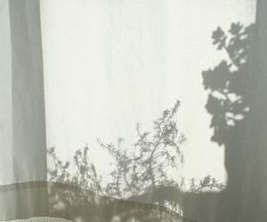 blanco, morning, and white image