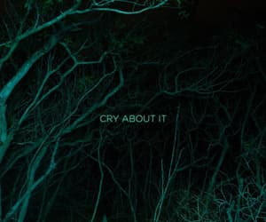 cry, green, and lights image