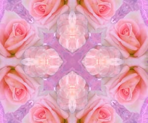 aesthetic, flowers, and kaleidoscope image