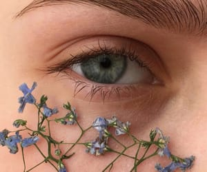 eye, flowers, and eyes image