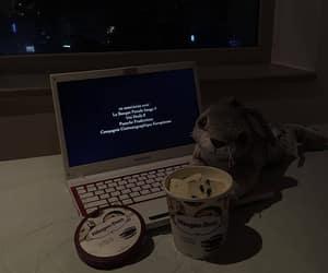 dark, food, and night image