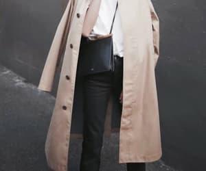 amazing, beautiful, and coat image