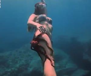 ocean, octopus, and snorkeling image