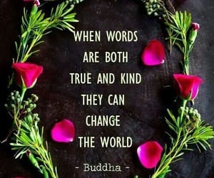 quotes, Buddha, and kind image