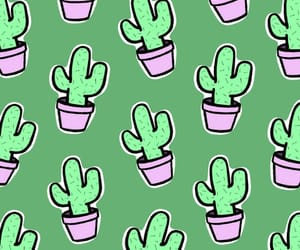 cactus, patron, and wallpaper image