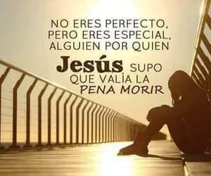 amor, especial, and morir image