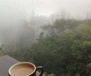 rain, coffee, and nature image