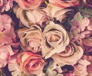 background, flowers, and like image