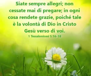 dio, grazia, and fede image