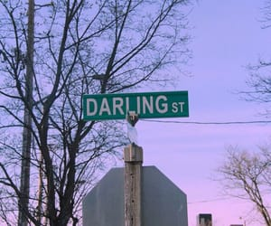 darling, photo, and sign image