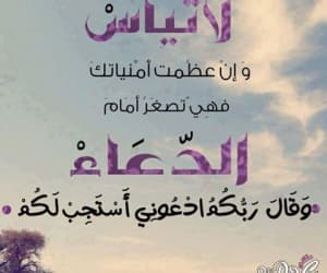 Image by Reem