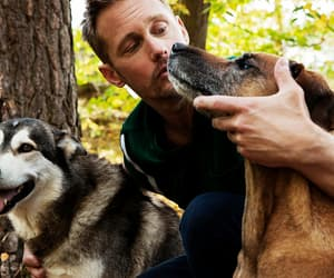 alexander skarsgard and dogs image