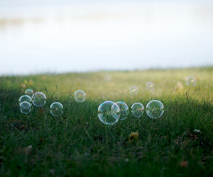 soap bubble image