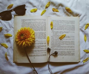 book, flower, and my photos image